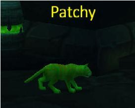 "Patchy ""3.0.8"" Cat"