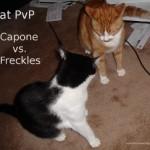capnfrecksfaceoffsmall