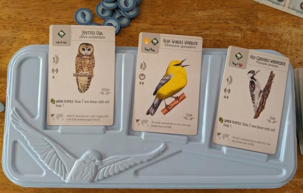 Three bird cards face up on a light blue tray for the game Wingspan.