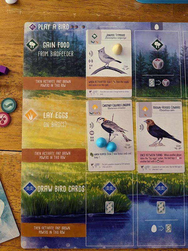 Overhead view of Wingspan player mat showing action choices. Bird cards and eggs also placed on mat.